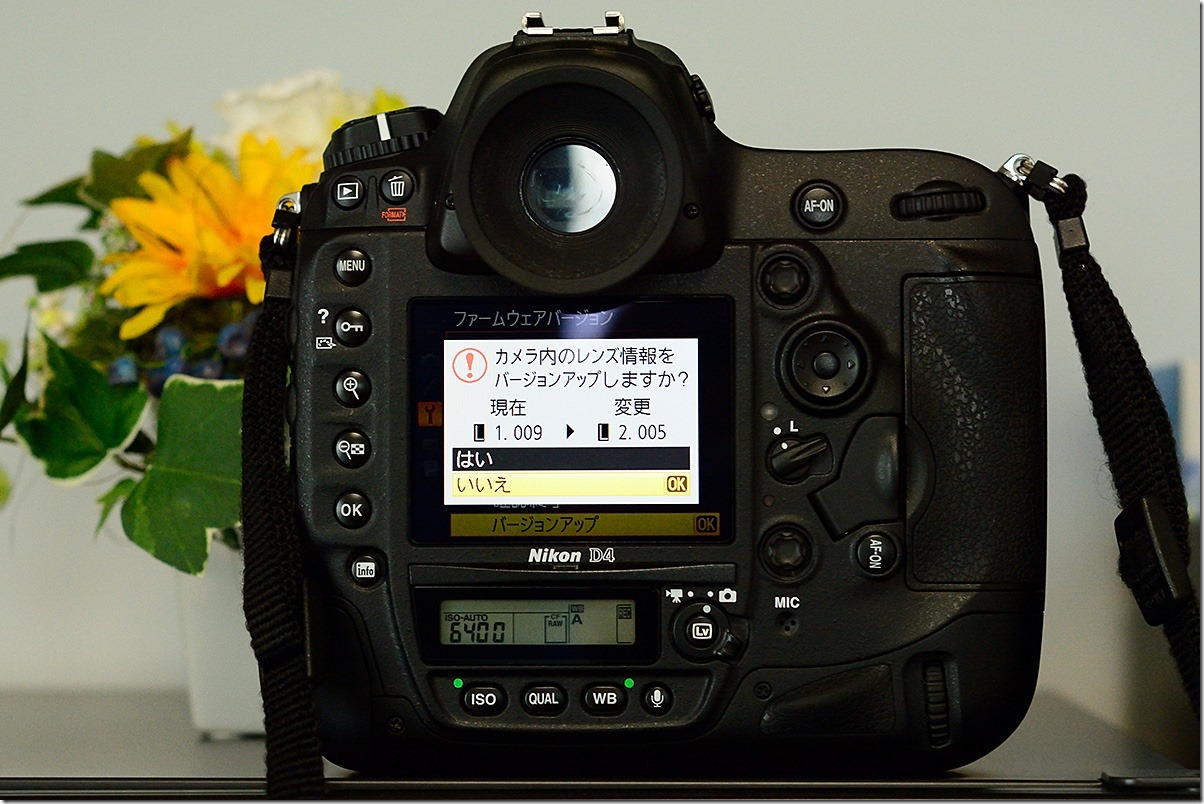 D7M_0533_blog