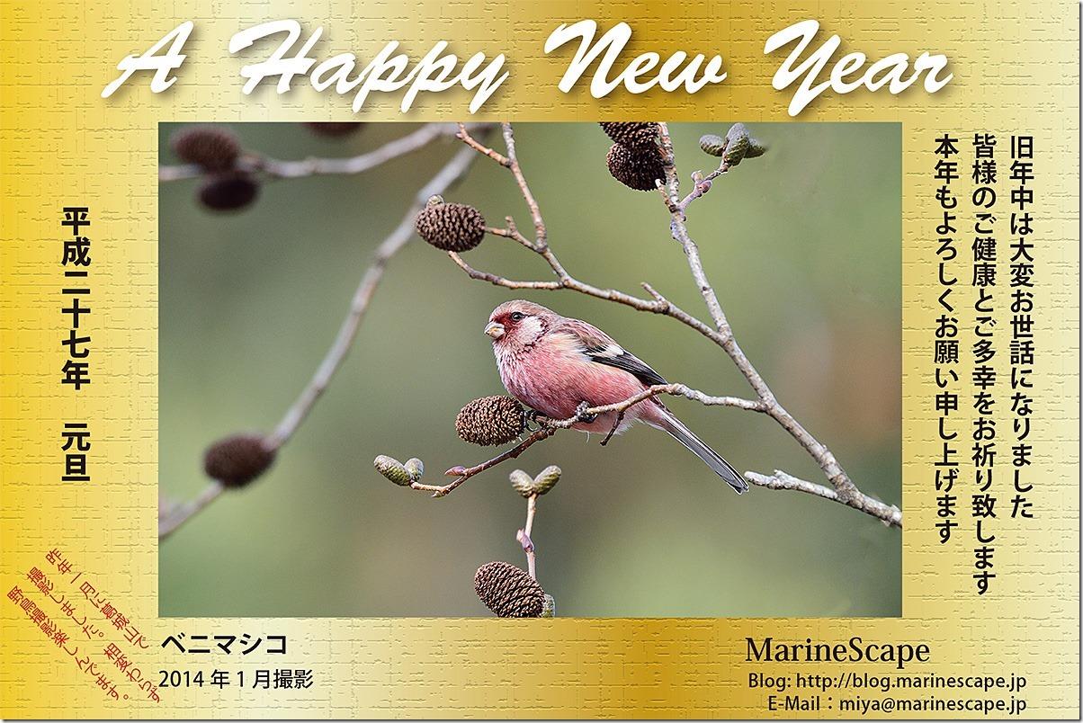 年賀ハガキ-2015-12M_blog