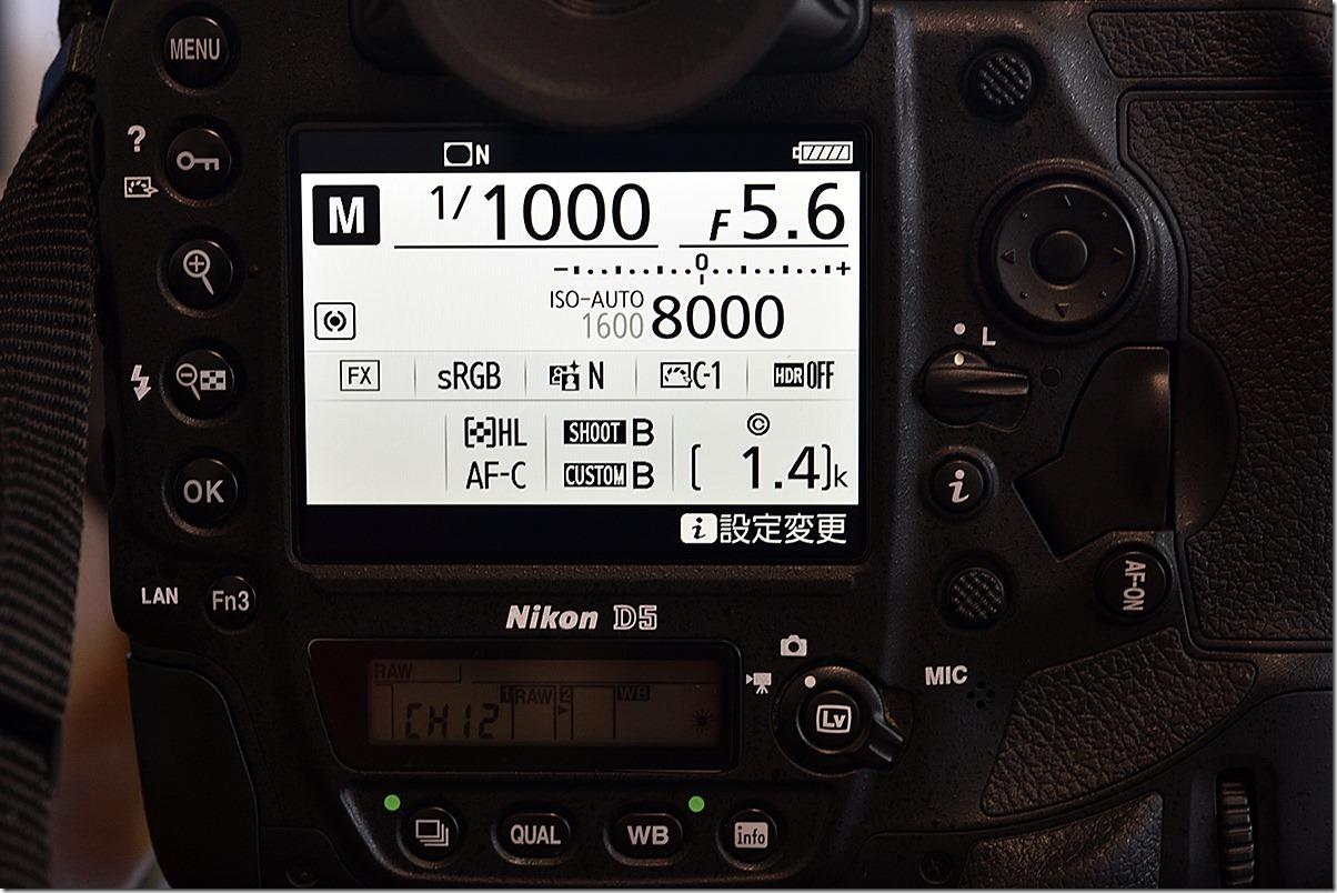 D8M_2791_blog