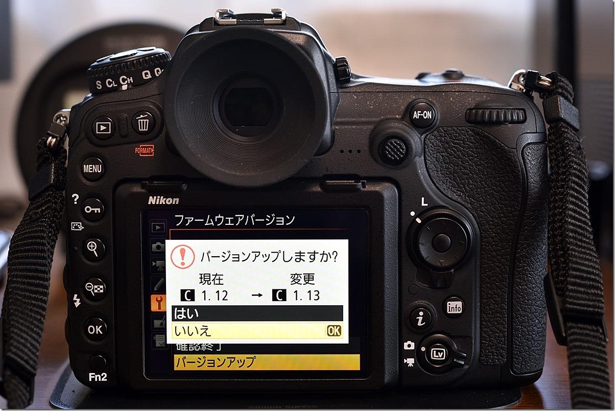 D8M_2797_blog